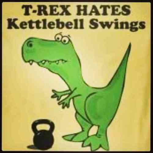TRex Swings